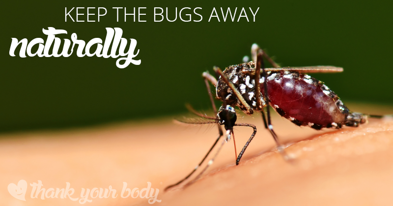 All natural homemade insect repellent by thank your body
