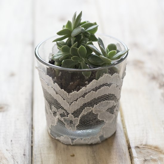 Glass planters with lace