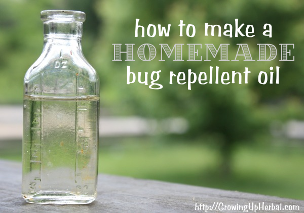 Homemade bug repellent oil by primarlly inspired