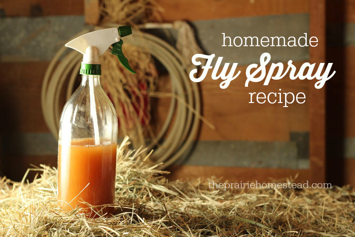 Homemade fly spray recipe by the prairie homestead