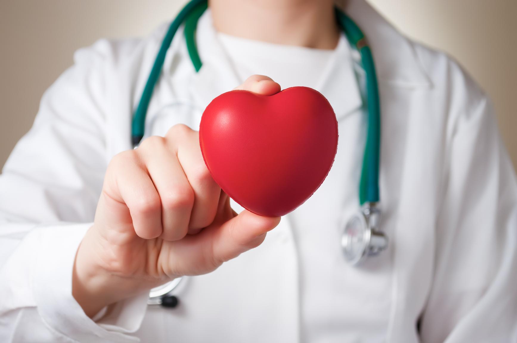 Heart in doctor's hand