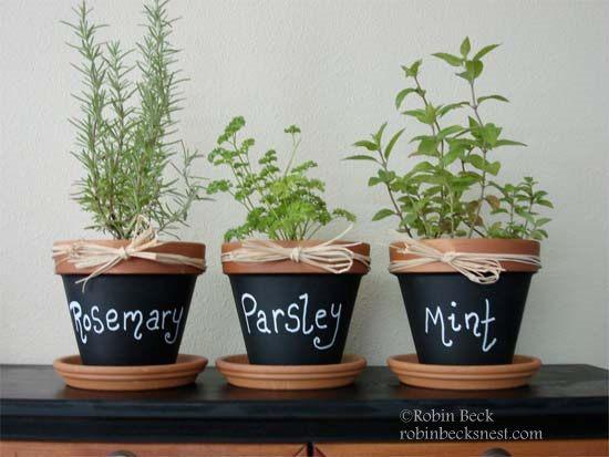 12 chalkboard plant pots