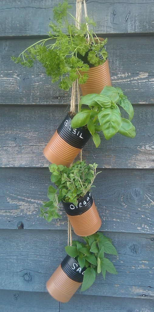 Hanging can herb garden