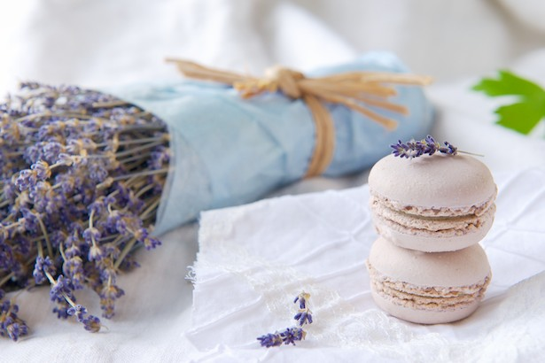 Lavender and white chocolate macaroons