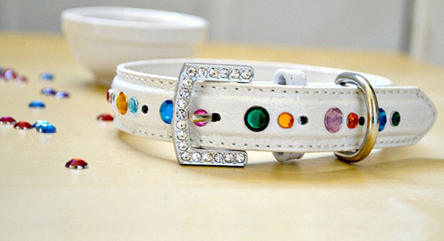 Blinged out rhinestone collar