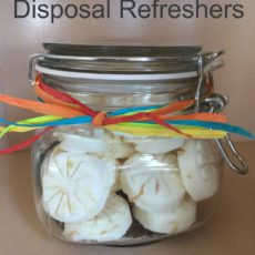 Garbage disposal refreshers diy