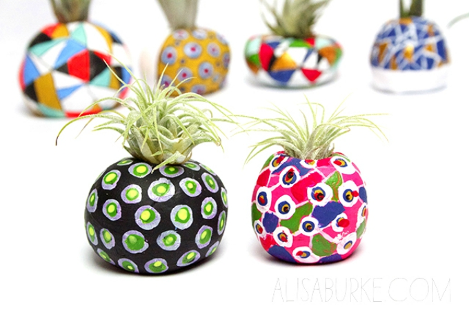 Rounded air plant pots
