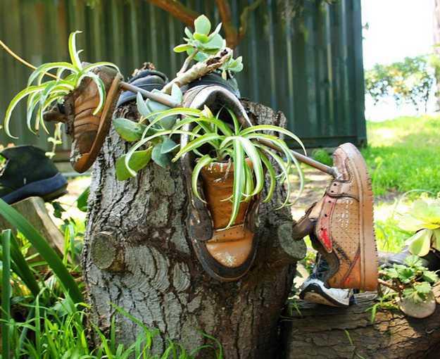 Running shoe herb garden