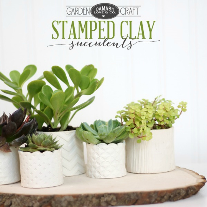 Stamped clay succulent pots