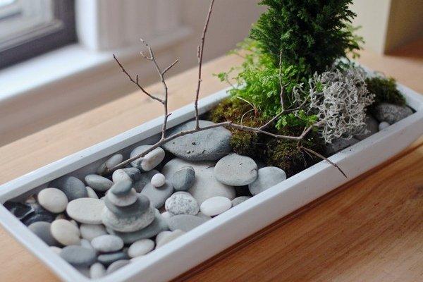 Tabletop rock garden