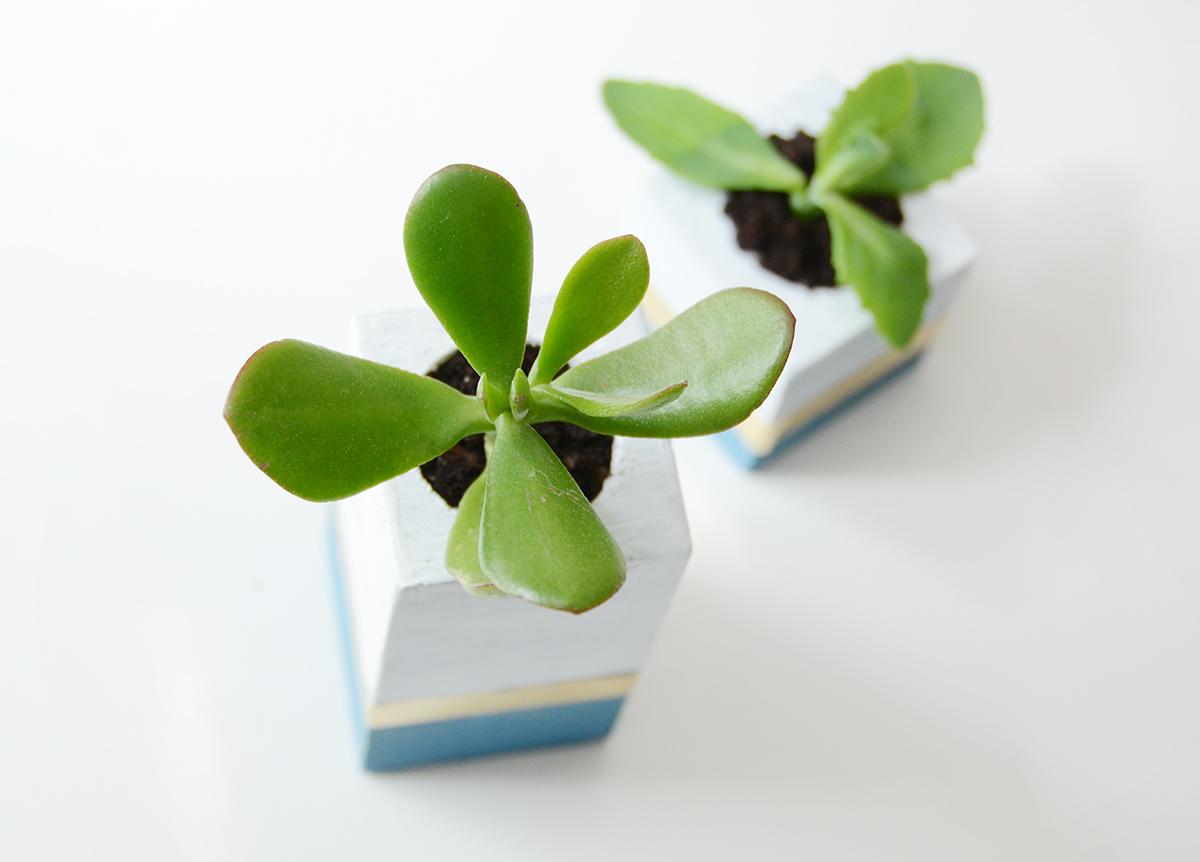 Diy wooden succulent planter 8