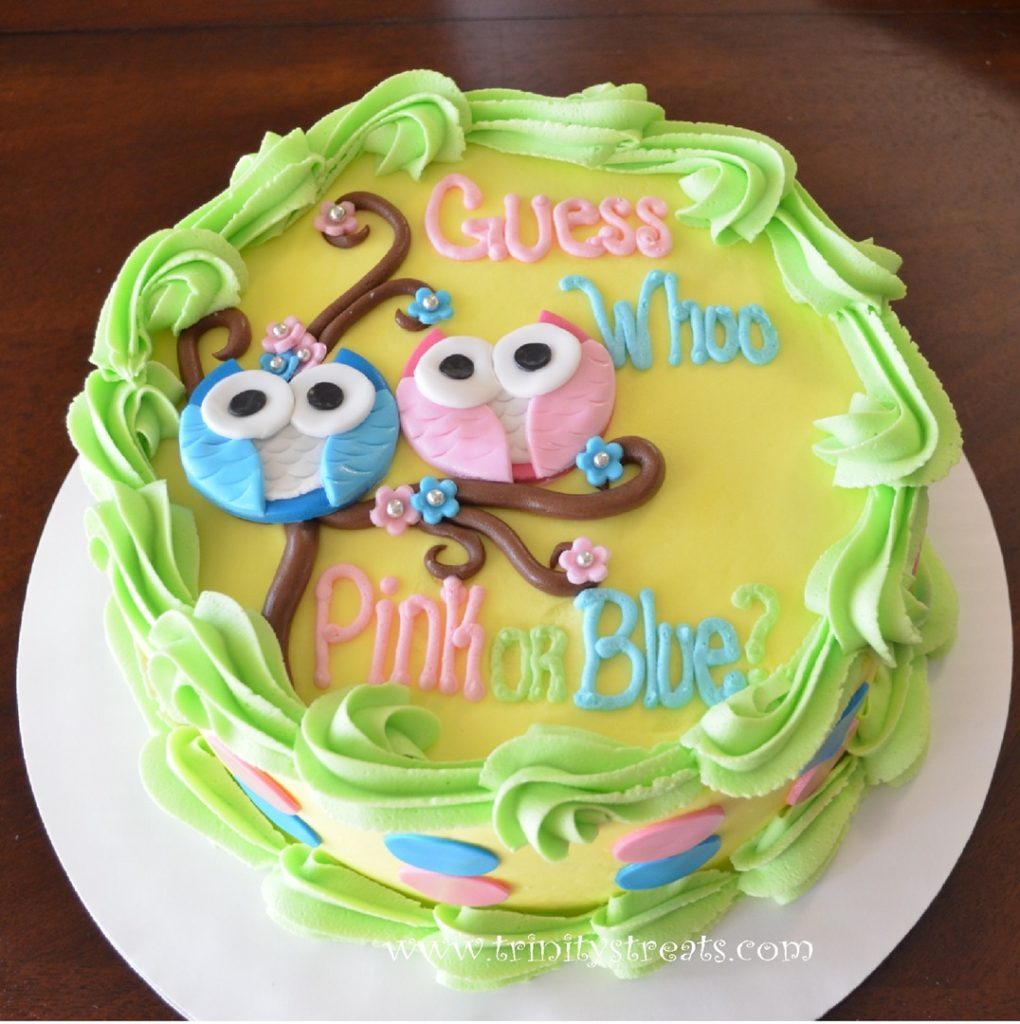 Owl gender reveal cake