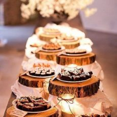 12 rustic dessert wood tree slices