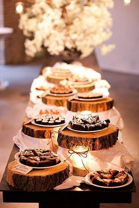 rustic dessert wood tree slices