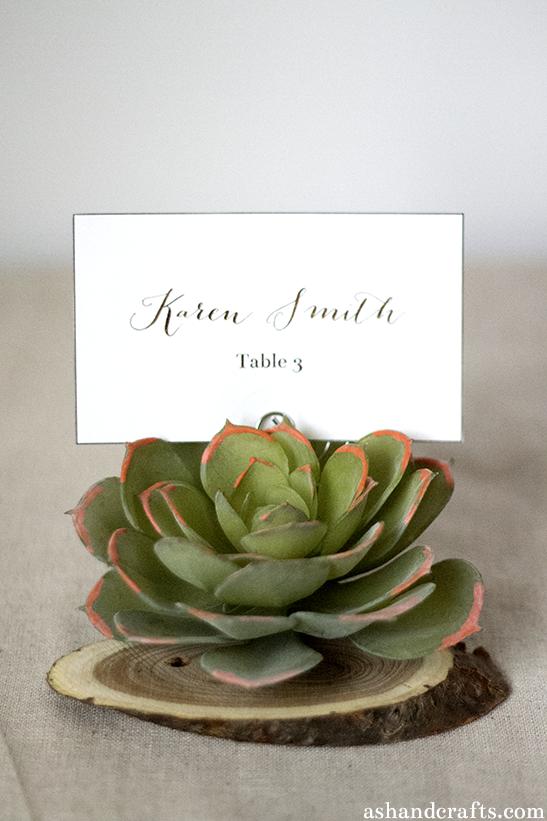 rustic succulent escort cards