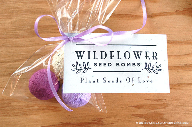 Coloured wildflower seed bombs