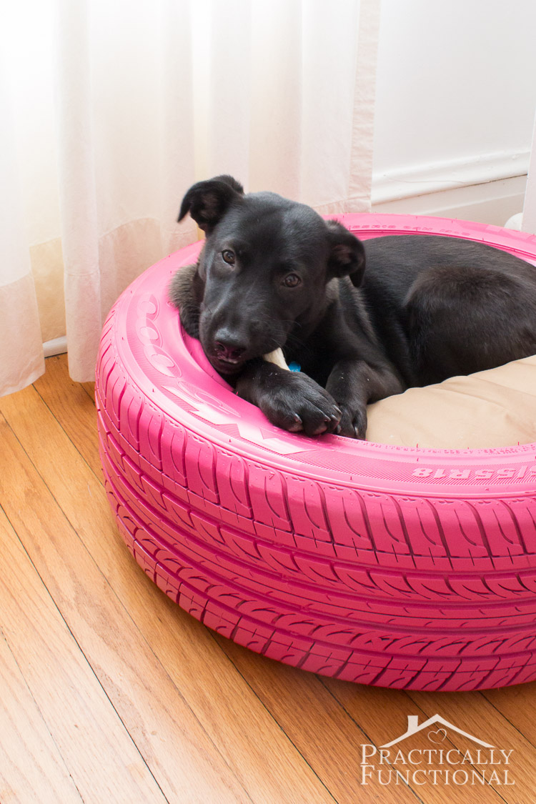 Diy dog bed from a tire 3