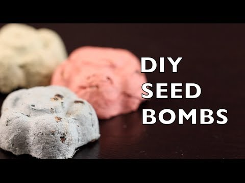 Flower shaped seed bombs