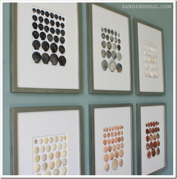 Framed shell art by colour and size