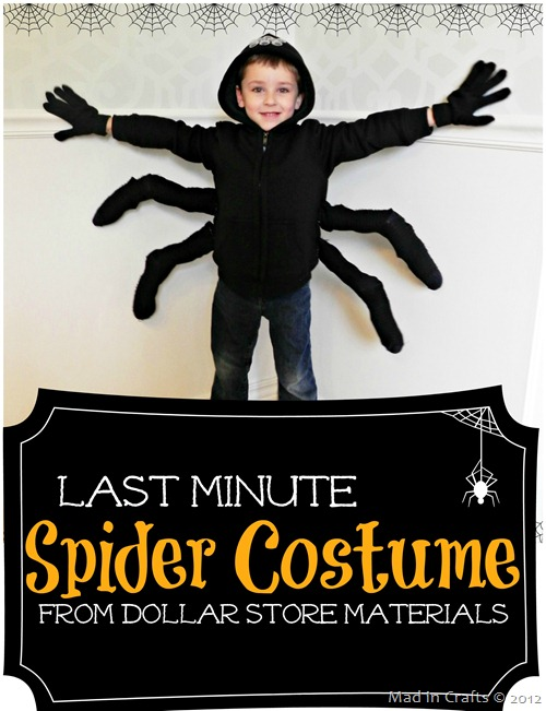 Last minute spider halloween costume[2]