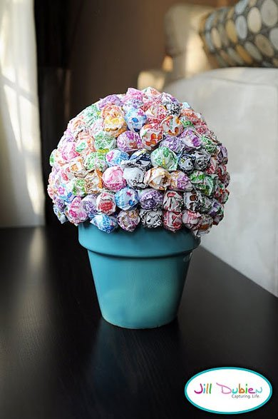 Potted lollipop tree