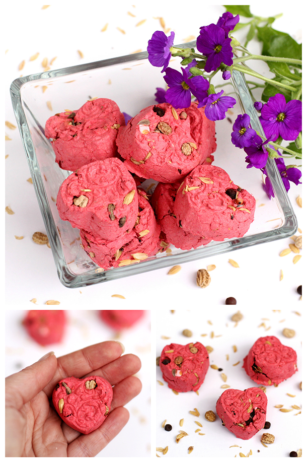 Red heart shaped seed bombs