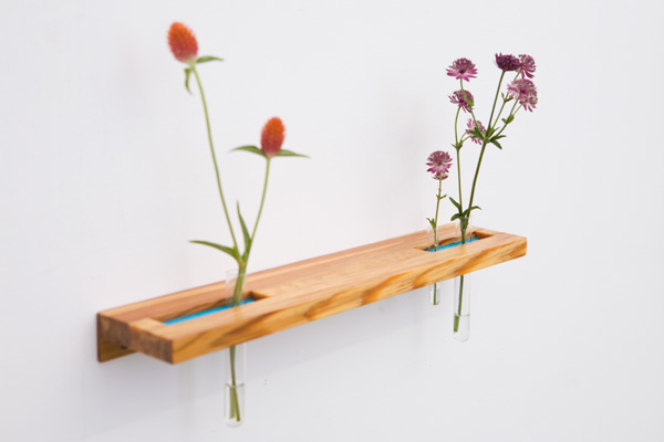 Wooden test tube plant shelves