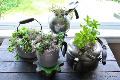 Cool vintage garden of old fashioned kettles 2 500x333