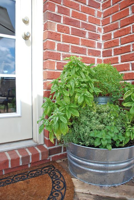 Diy backdoor herb garden