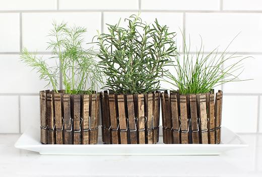 Diy clothespin planters
