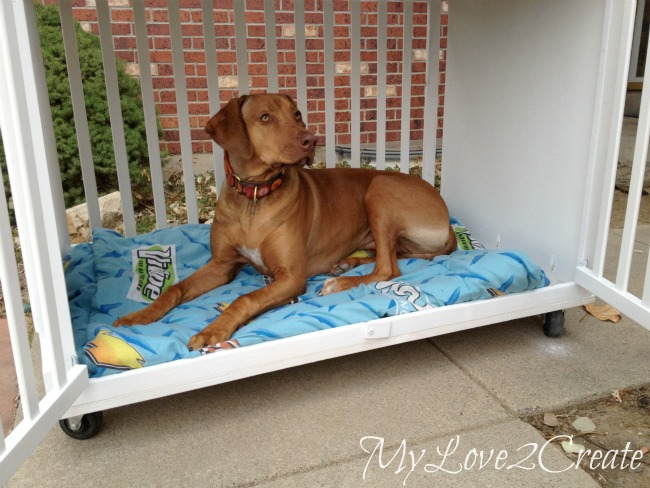 Diy dog house crib