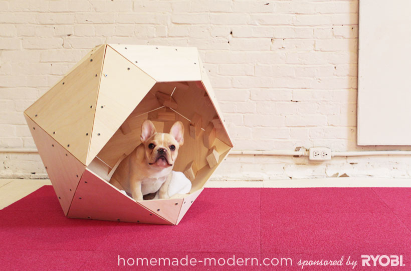 Dog House With A Dog Bed That Fits