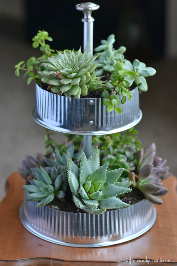 Diy herb garden industrial