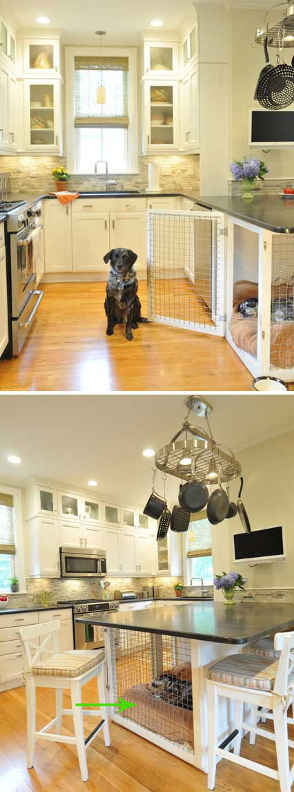 Diy inside doghouse