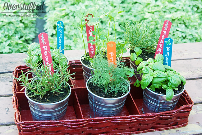 Diy patio herb garnde