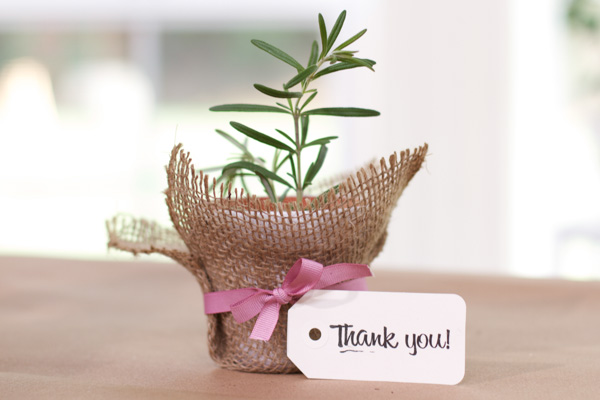 Mini plant with Thank You tag :)