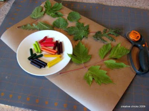 Crayon and leaf rubbings