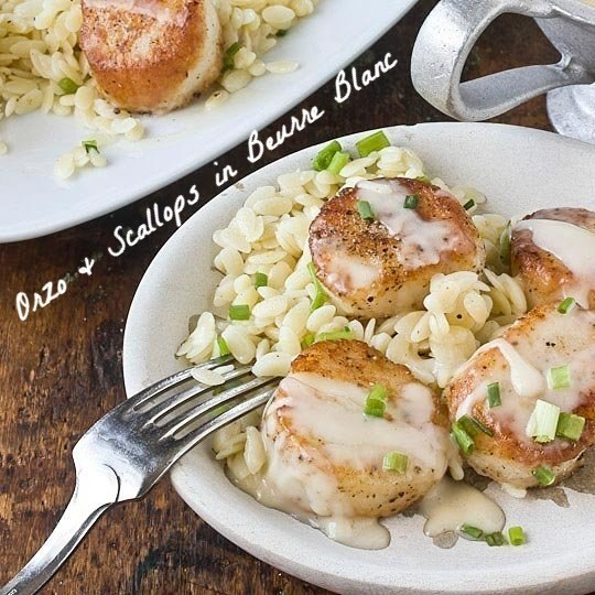 Orzo and scallops in beurre blanc sauce