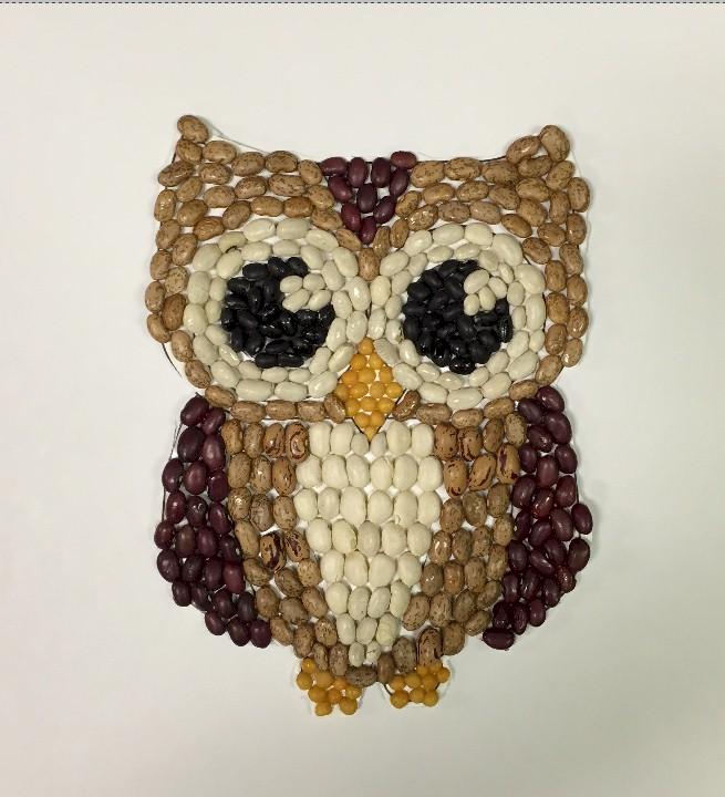 Bean mosaic owl
