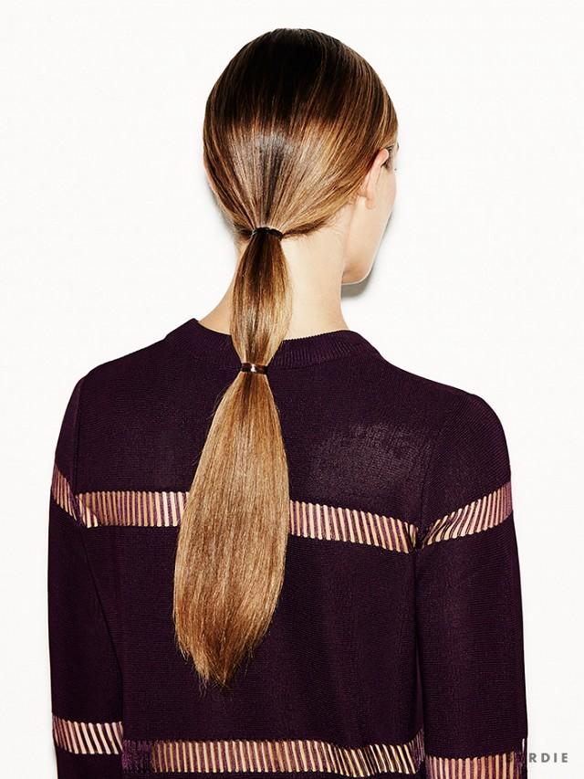 Diy double ponytail