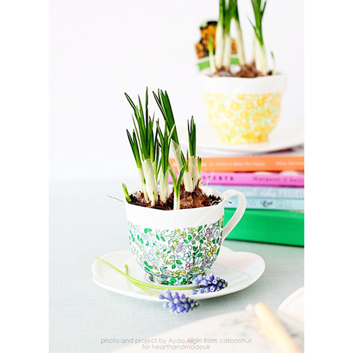 Decoupaged spring teacup planters