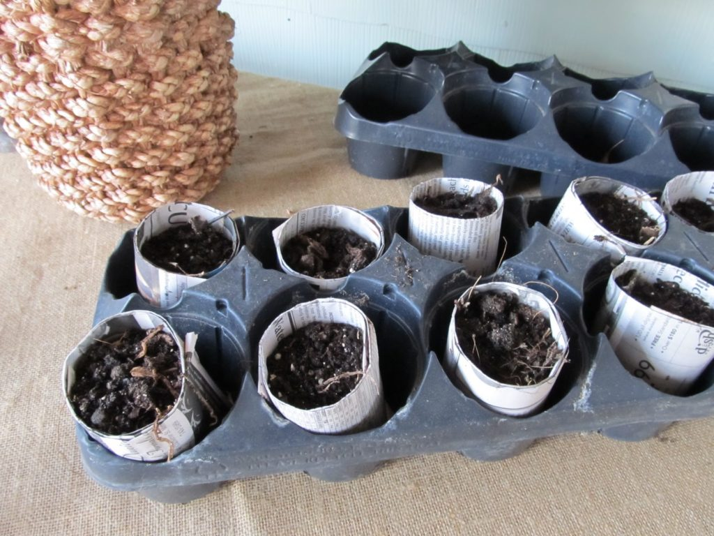 Mini soil pots