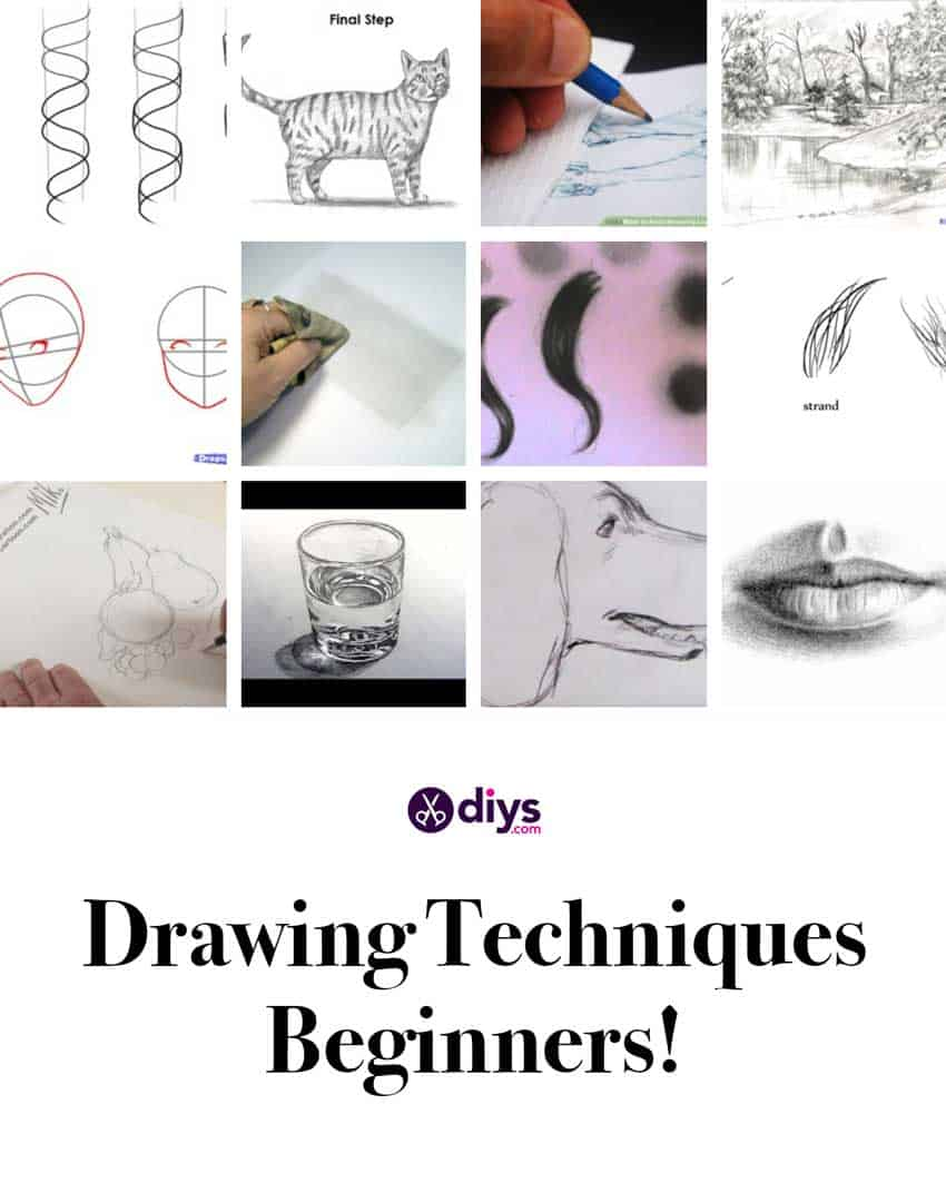 Learn How to Sketch & Draw: 50 Free Basic Drawing for Beginners