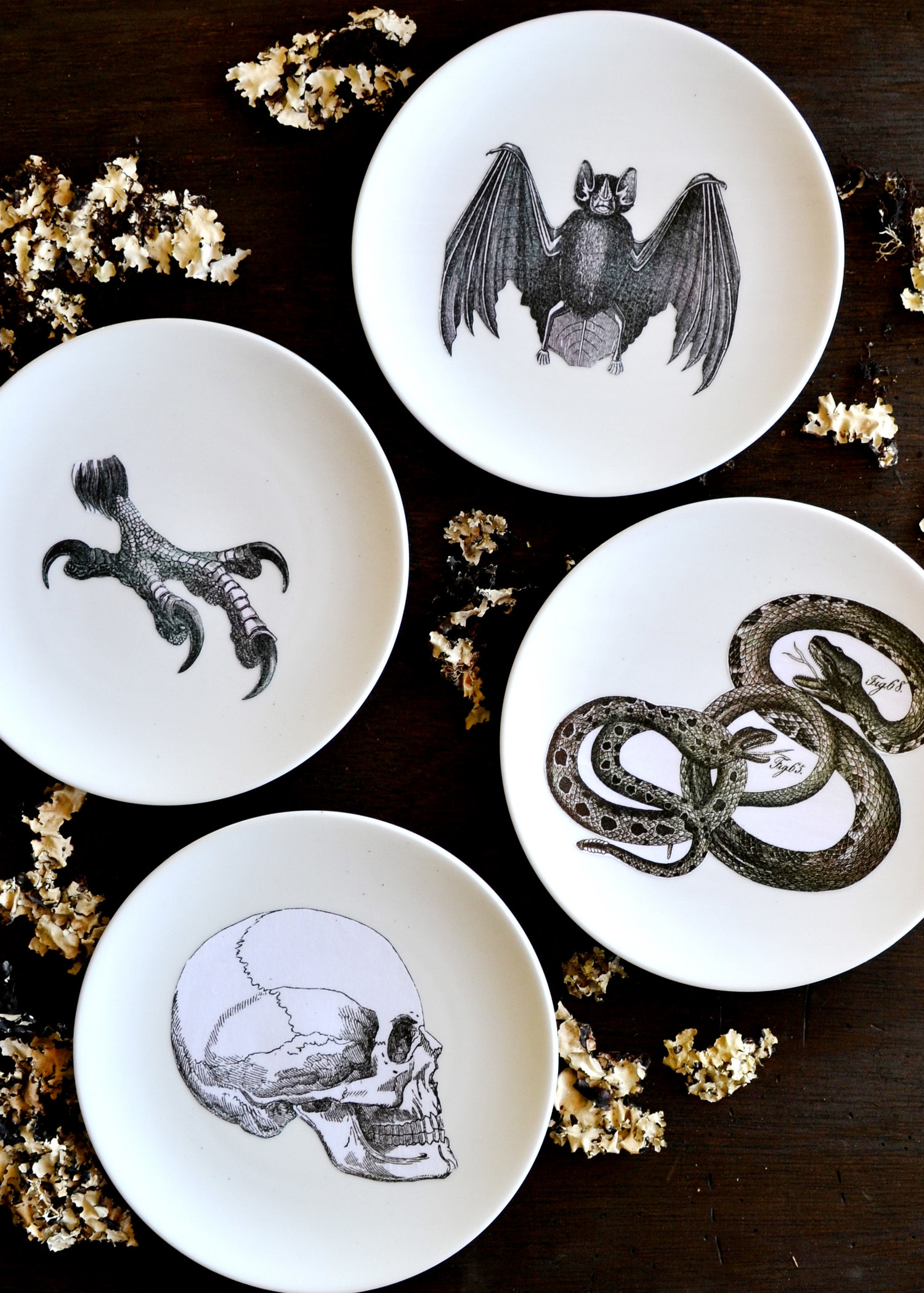 Diy silhouette plates halloween decor
