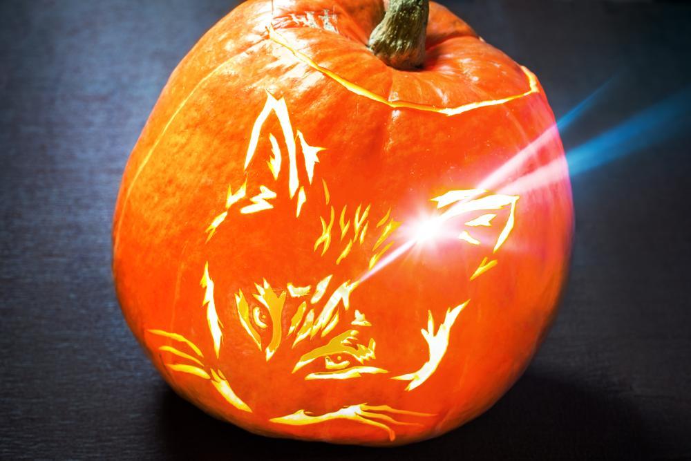 Halloween Cat - Cute Pumpkin Carving Ideas