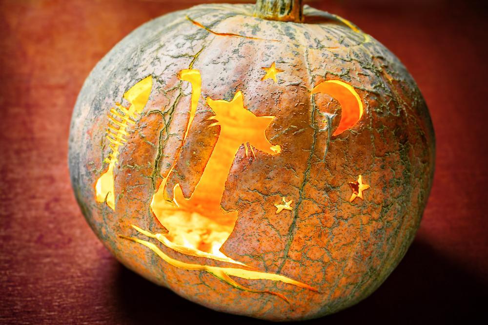 Cat, moon, and fishbone cute pumpkin carving ideas
