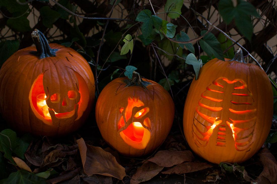Creepy anatomy pumpkins