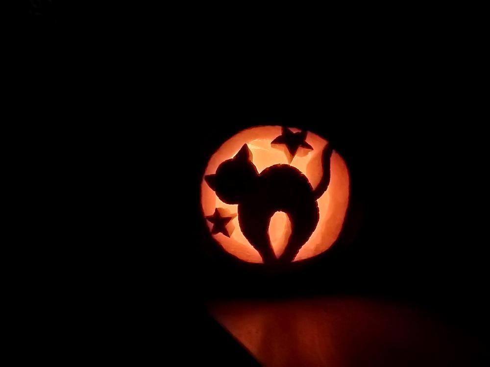 Kitten and stars cute pumpkin carving ideas