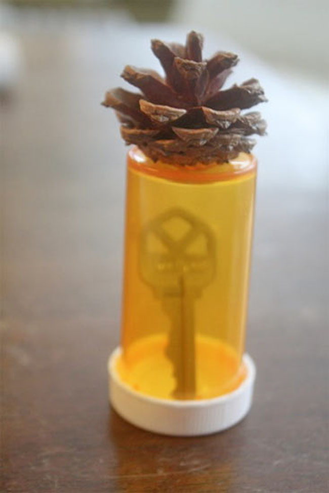 Pine cone key finder