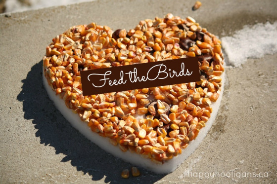 Diy heart birdfeeder diy